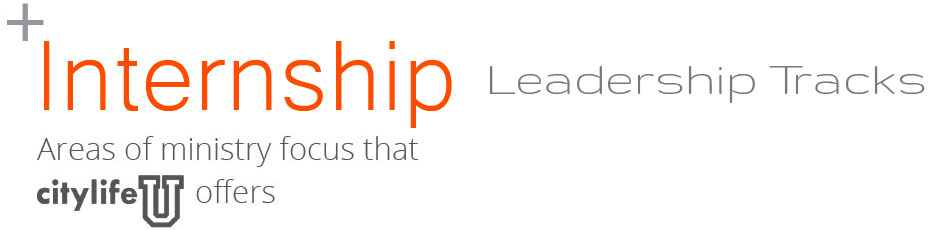 internship-leadership-tracks